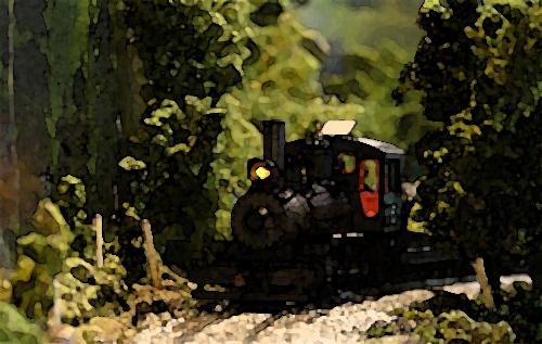 Engine 15 entering Mara